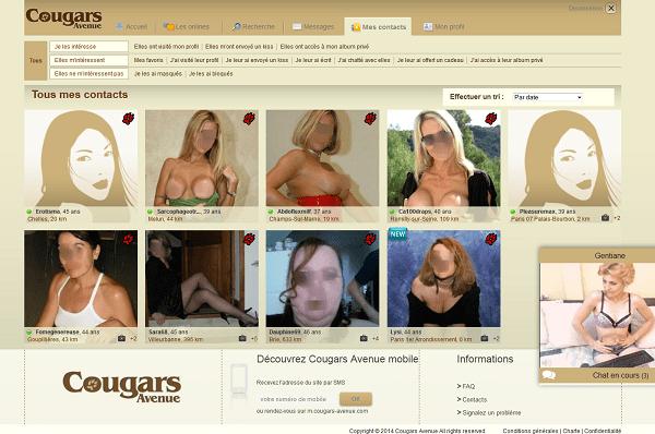 cougars avenue profil
